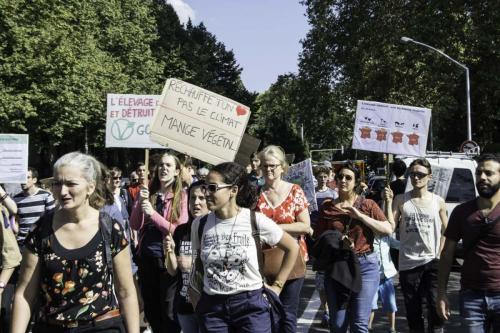 action marche pour le climat (12 sur 30)