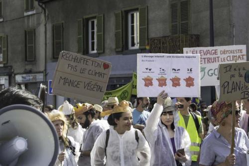 action marche pour le climat (18 sur 30)