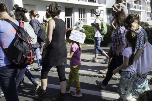 action marche pour le climat (30 sur 30)